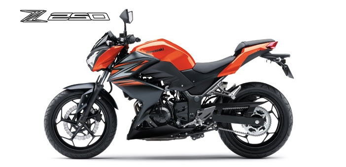 Kawasaki Z250 Mileage Review Prices In India 2016 Specifications
